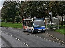 NS3333 : Bus Stop on Kilmarnock Road by David Dixon