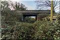 SJ7742 : Manor Road Bridge over Madeley Disused Railway Station by Brian Deegan