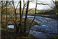 SD5051 : River Wyre by Ian Taylor