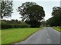NS3429 : Monktonhill Road near Southwood by David Dixon