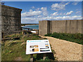 SZ0382 : Fort Henry, Studland by Phil Champion
