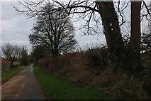 ST8968 : Lane in Gastard by David Howard