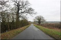 SP7334 : Straight road in Thornborough by David Howard
