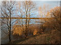 SE3317 : Winter sunlight at Pugneys Country Park by Christine Johnstone
