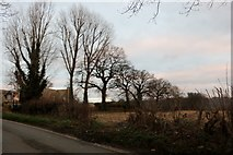 ST9168 : Melksham Road entering Lacock by David Howard