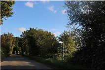 TL4326 : Albury Road, Gravesend by David Howard