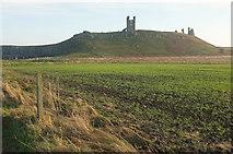 NU2521 : Dunstanburgh Castle by Derek Harper