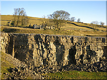 NY9539 : Harrowbank Quarry (disused) below High Farm by Mike Quinn