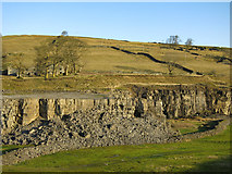 NY9539 : Harrowbank Quarry (disused) below High Farm and Laverock Seat by Mike Quinn