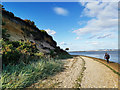SY9888 : Cliff and beach near Shipstal Point, RSPB Arne nature reserve by Phil Champion