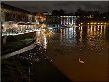 SX9192 : Exeter : River Exe by Lewis Clarke