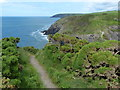 SN1044 : Pembrokeshire Coast Path at Traeth Bach by Mat Fascione