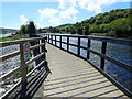 J0923 : Bridge carrying the Newry Greenway over the canal overspill by Eric Jones