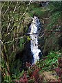 NT9113 : Lower waterfall at Lindhope Linn by Andrew Curtis