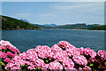 SH5836 : View across the estuary at Portmeirion by Jeff Buck