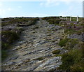 SN0441 : Steep rocky section of the Pembrokeshire Coast Path by Mat Fascione