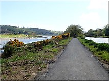J0923 : View SE along the Newry Greenway by Eric Jones