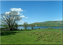 J2933 : Rough pasture on the south-eastern shores of Lough Island Reavy by Eric Jones