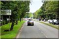 NS5367 : Victoria Park Drive South, A814 by David Dixon