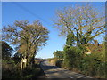 TQ5997 : Doddinghurst Road, near Brentwood by Malc McDonald