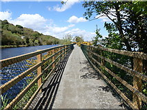 J1021 : View North along the Newry Greenway by Eric Jones