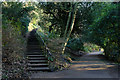 NZ2666 : Path and steps in Jesmond Dene by Trevor Littlewood