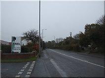 SJ9905 : A34 near Newtack Farm by JThomas