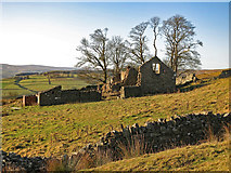NY9539 : Rough pastures around Laverock Seat by Mike Quinn