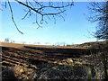 NZ0750 : Ploughed field near Allensford by Robert Graham