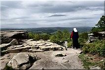 SE2064 : Brimham Rocks by Peter Jeffery