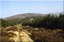 S2505 : Track leading up to Seefin, Monavullagh Mountains, Co Waterford by Colin Park