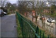 SK5802 : Saffron Lane in Aylestone Park, Leicester by Mat Fascione