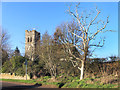 SU3394 : Tower and Tree, Hatford by Des Blenkinsopp