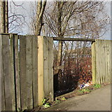 ST3487 : Hole in a wooden fence alongside the A48, Newport by Jaggery