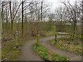 SE1720 : Calder Valley Greenway, west from Bog Green Lane by Stephen Craven