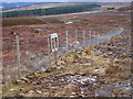 NH7202 : Deer fence with a one-way flap by wrobison