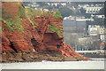 SX9062 : Cliffs, Livermead by Derek Harper