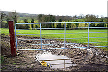 H4681 : Muddy entrance to field, Timurty by Kenneth  Allen