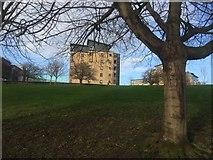 NT2774 : Lochend Park by Richard Webb