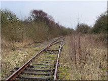 SD3344 : Disused Railway Track near ICI Thornton by David Dixon