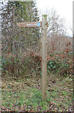 NX4564 : Signpost for the Visitor Centre by Billy McCrorie