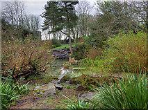 SD3138 : The Rock Gardens, Bispham by David Dixon