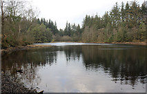 NX4465 : Bruntis Loch by Billy McCrorie