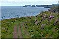 SM7624 : Pembrokeshire Coast Path at Caerfai Bay by Mat Fascione