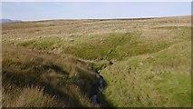 NN8403 : Confluence on the Millstone Burn by Richard Webb