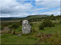 SN1329 : Standing stone at Gors Fawr by Mat Fascione