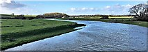 TQ1913 : River Adur - view upstream from the Downs Link bridge by Ian Cunliffe