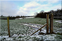 H5064 : Wintry at Moylagh by Kenneth  Allen