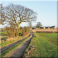 SE7189 : Farm road heading towards Spaunton by Trevor Littlewood