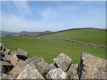 J1018 : Intake land on the lower slopes of Anglesey Mountain by Eric Jones